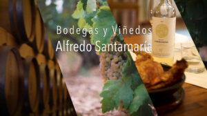 Sergio Camporota - creative - Fotografía -bodegas Alfredo Santamaría 30 seg spot